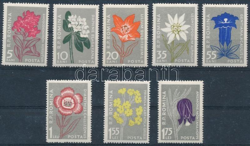 A Kárpátok virágai, Carpathian flowers