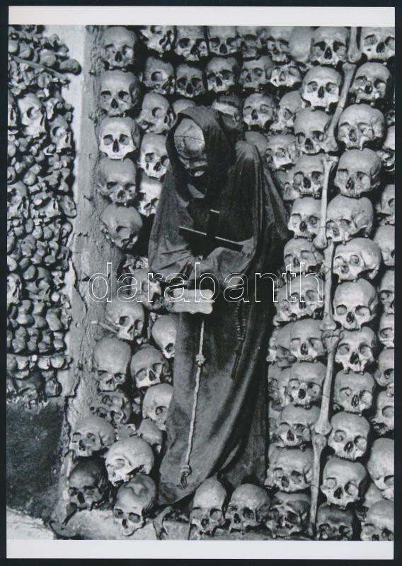 Csontkollekció, régi negatívról készült mai nagyítás, 25x18 cm