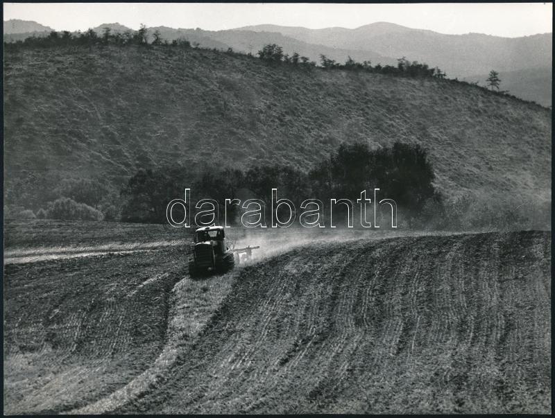 cca 1976 Gebhardt György (1910-1993) 2 db jelzés nélküli vintage fotóművészeti alkotása, a szerző hagyatékából, 17,5x23,5 cm