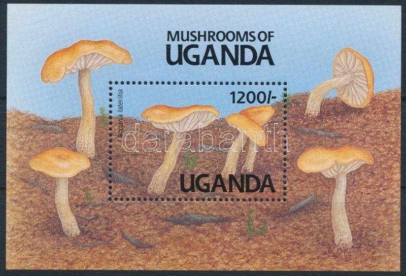 Mushroom block, Gombák blokk