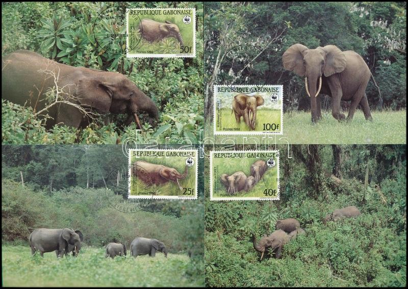 WWF Forest elephant set 4 CM, WWF: Erdei elefánt sor 4 db CM-en
