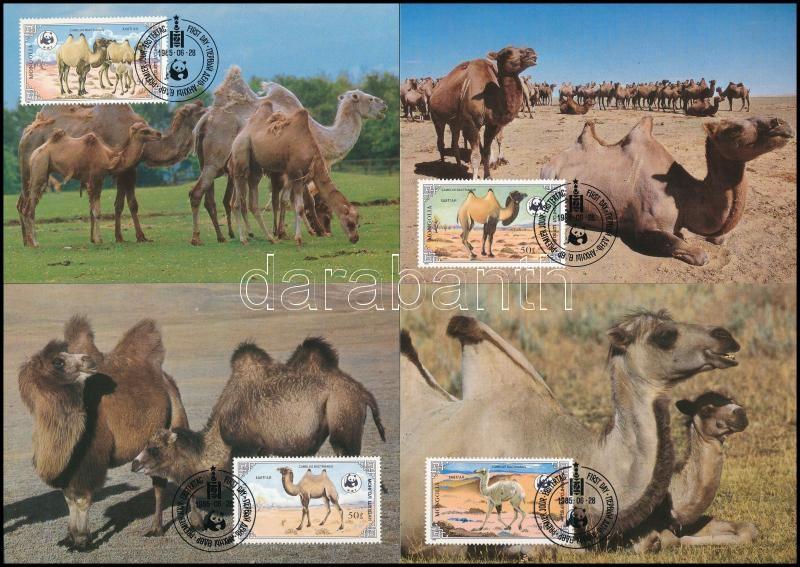 WWF Camel set on 4 FDC, WWF: Teve sor 4 db CM-en
