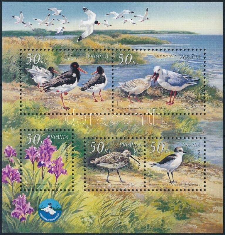 Black Sea Biosphere Reserve Birds block, Fekete tengeri bioszféra rezervátum madarak blokk
