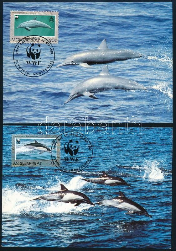WWF Dolphins set on 4 CM, WWF Delfinek sor 4 db CM-en