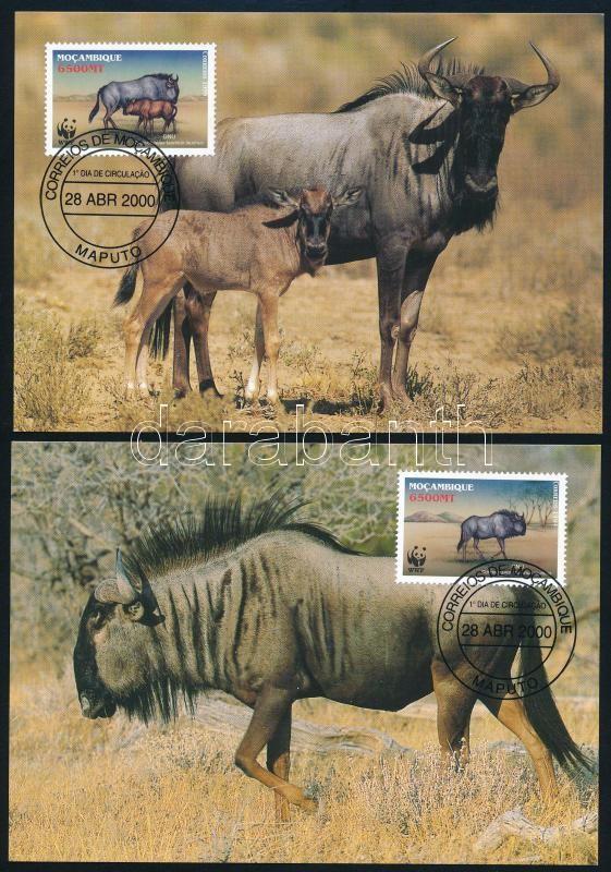 WWF Wildebeests set on 4 CM, WWF: Gnu sor 4 db CM-en