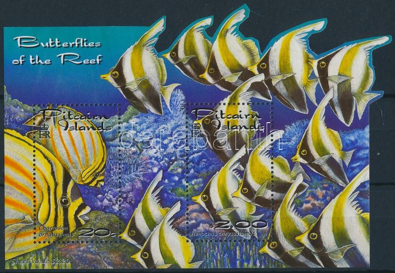Coral reefs block, Korallzátonyok halai blokk