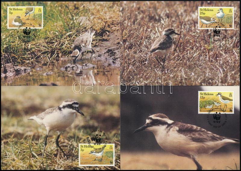 WWF: St. Helena Island plover set 4 values on 4 CM, WWF: Szent Ilona-szigeti lile sor 4 értéke 4 db CM-en