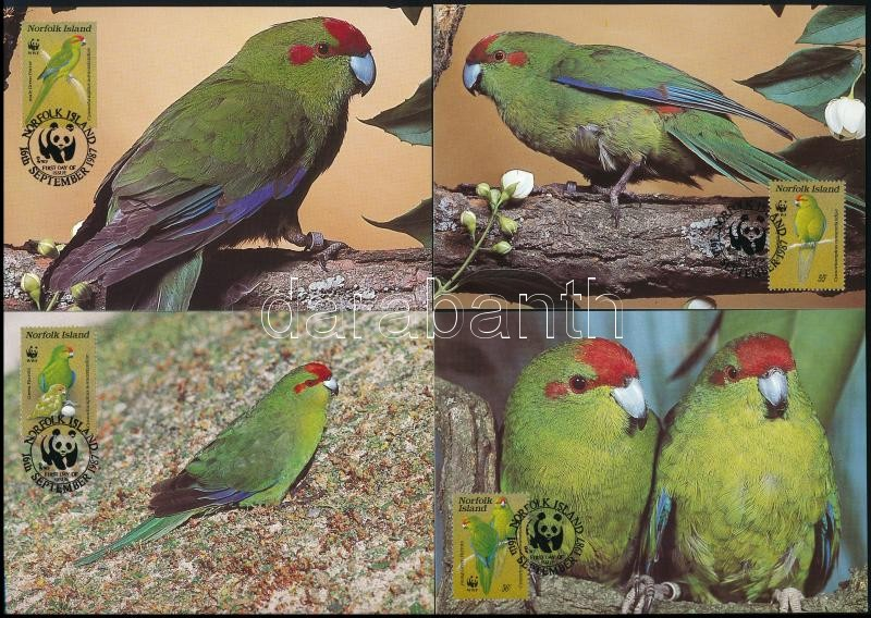 WWF Parrots set 4 CM, WWF: Papagáj sor 4 db CM-en