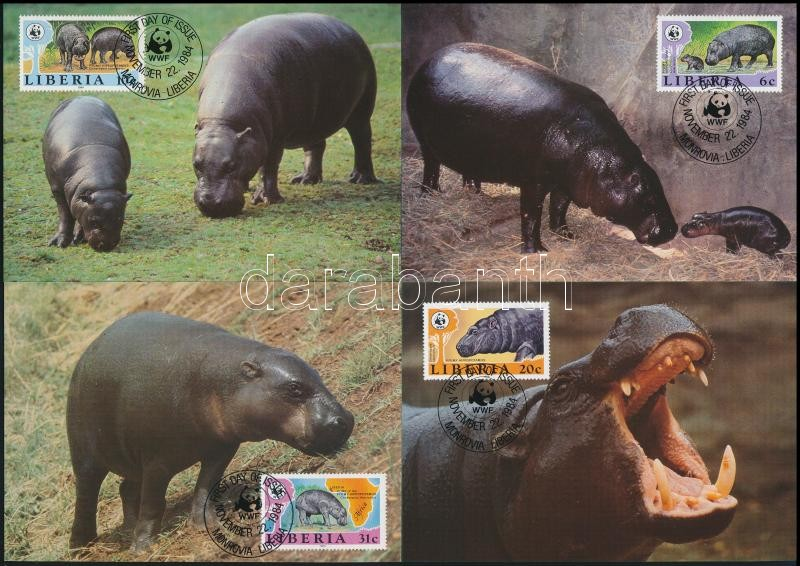 WWF: Pygmy hippopotamus set on 4 CM, WWF: Törpe víziló sor 4 db CM-en