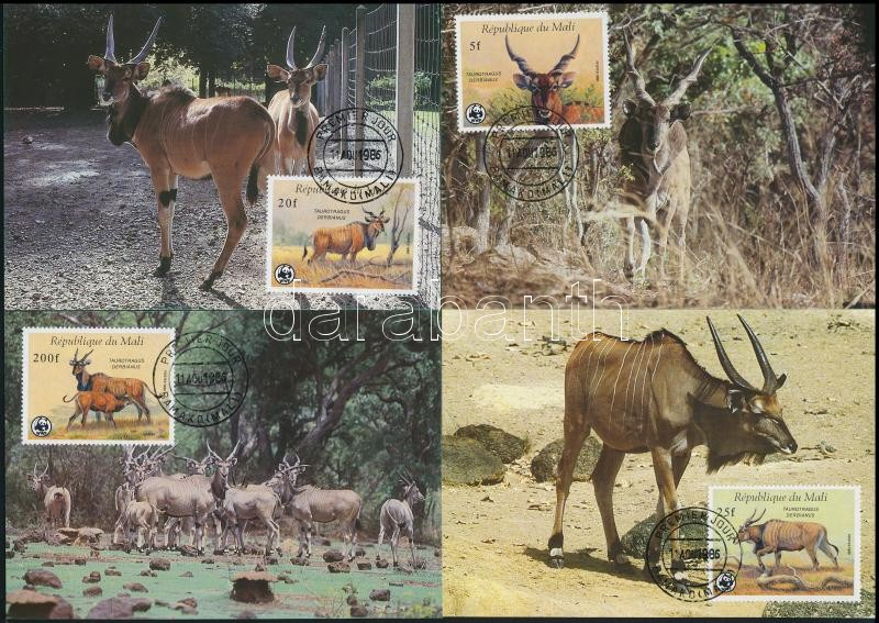WWF: Common eland set on 4 CM, WWF: Jávorantilop sor 4 CM-n