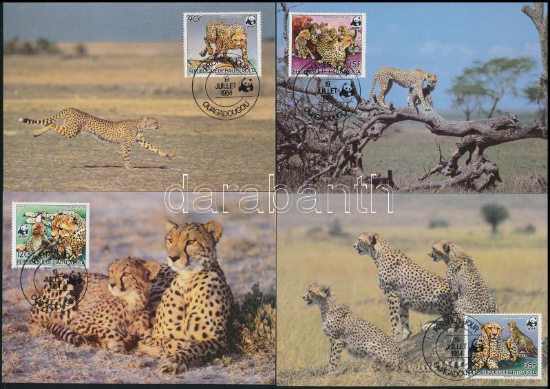 WWF: cheetah set CM, WWF: gepárd sor CM