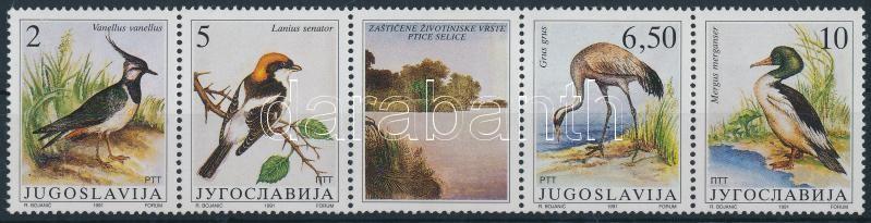Protected Animals Birds stripe of 5 with coupon (gum disturbance), Védett állatok; Madarak szelvényes ötöscsík (apró betapadásnyom)