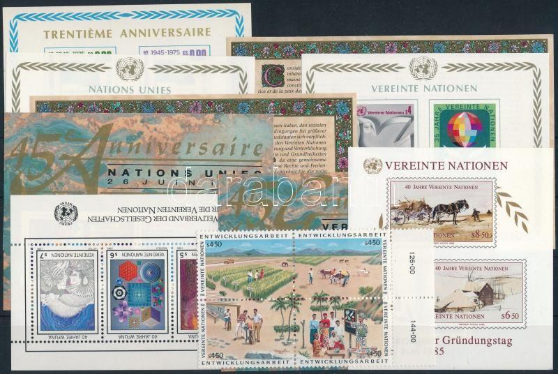 1964-1990 UNO Geneva, Vienna 9 blocks + 1 block of 4, 1964-1990 ENSZ Genf, Bécs 9 klf blokk + 1 négyestömb