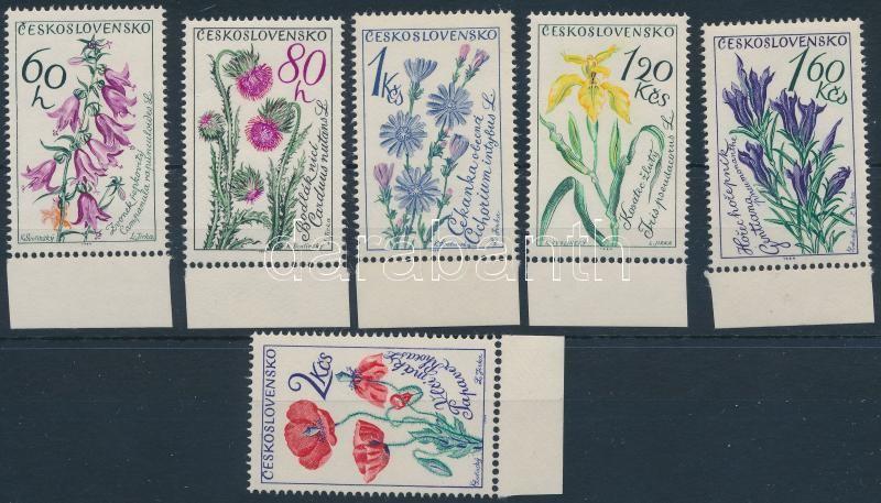 Virág ívszéli sor, Flower margin set