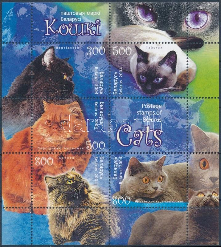 Cats block, Macskák blokk