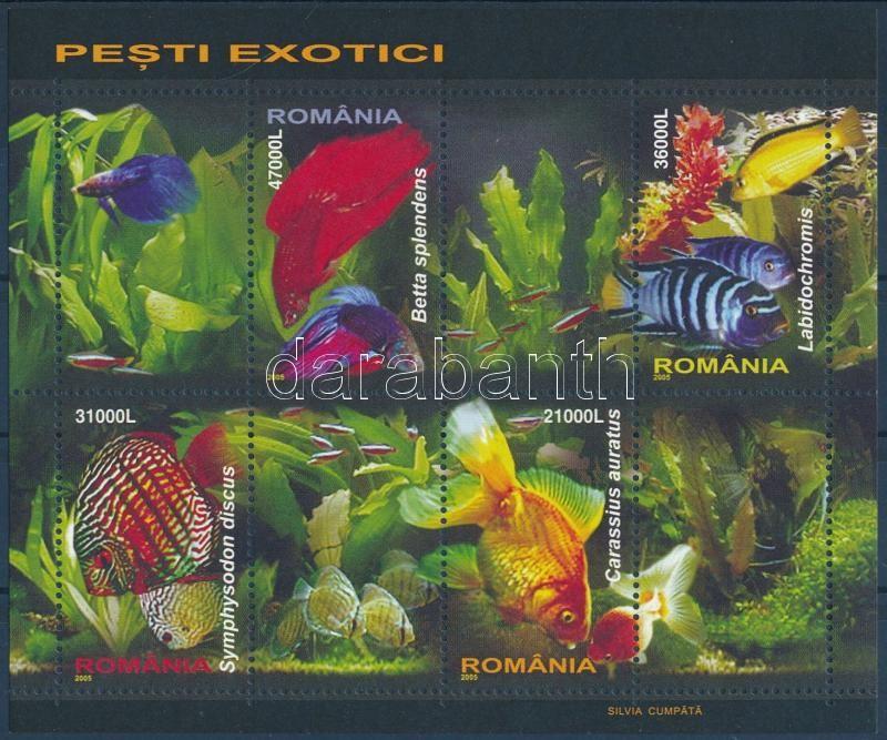 Tropical fish block, Díszhalak blokk