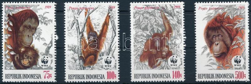WWF Orangutan set, WWF: Orangután sor