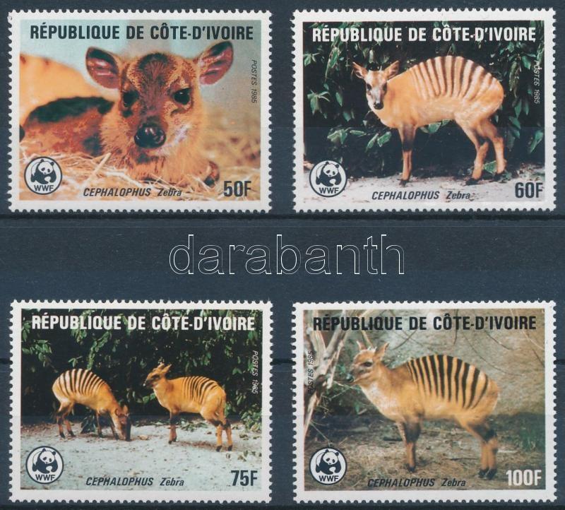 WWF: Zebra duiker set, WWF: Zebra-bóbitásantilop sor