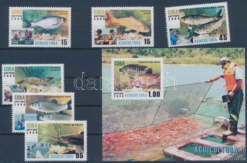 Fishes set + block, Halak sor + blokk