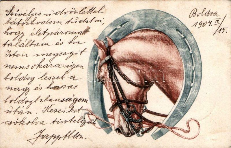 Horse, horseshoe, Ló, lópatkó