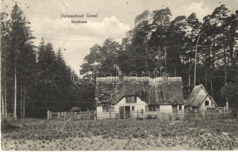 Graal-Müritz, Ostseebad, Waldhaus / forest house
