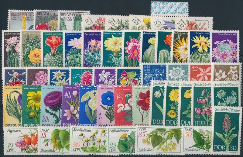 1965-1982 Flower 50 stamps, 1965-1982 Virág 50 db klf bélyeg, közte teljes sorok stecklpaon