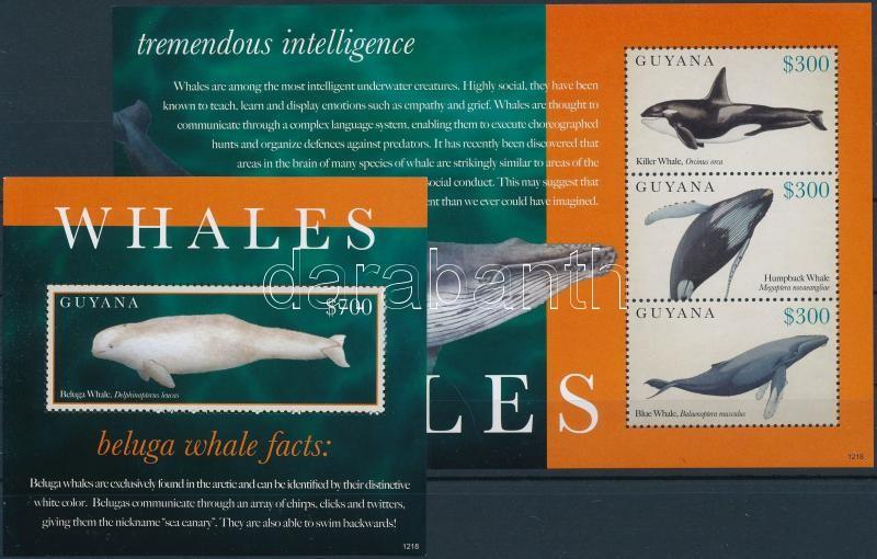 Whales mini sheet + block, Bálnák kisív + blokk
