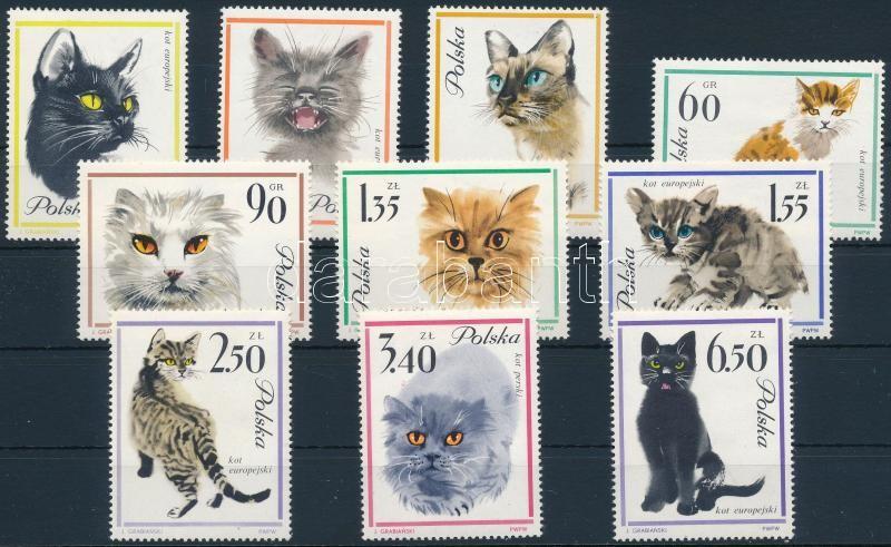 Cats set, Macskák sor