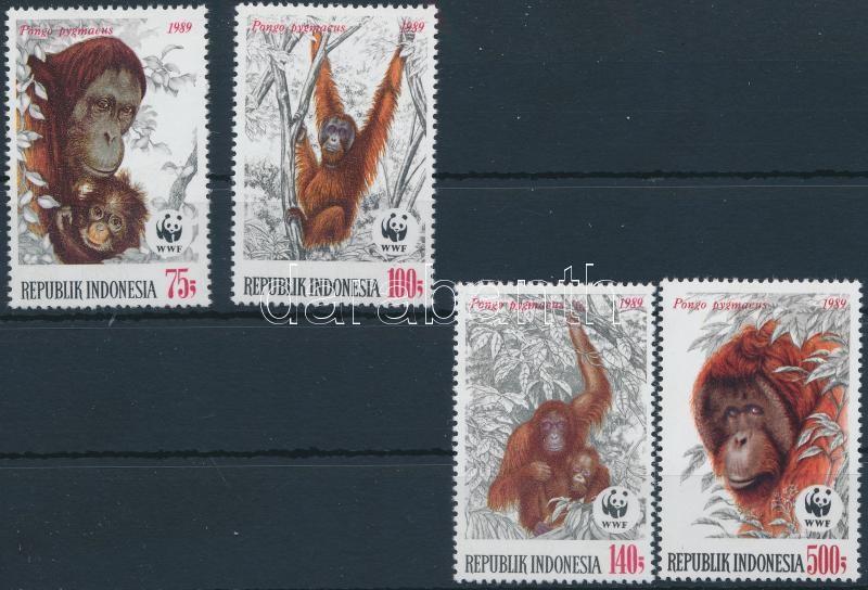 WWF Borneo orangutan set, WWF: Borneói orangután sor