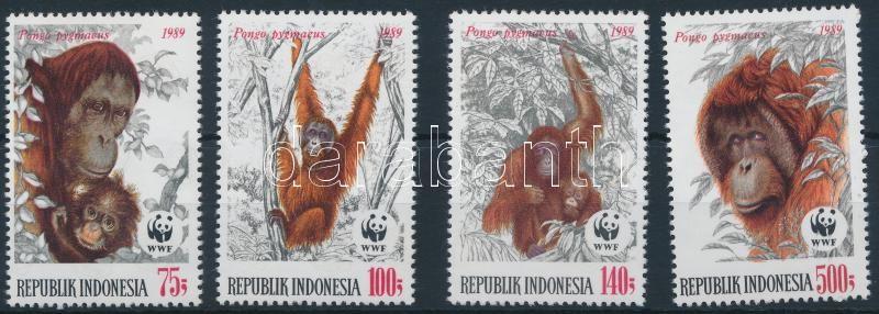 WWF Bornean orangutan set, WWF: Borneói orangután sor