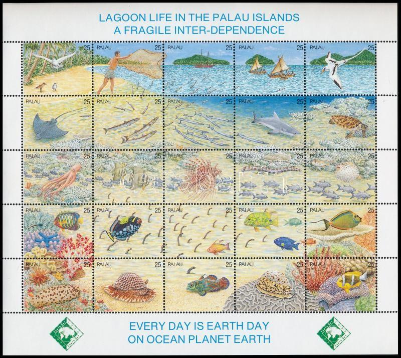Lagoon wildlife set in relation, Lagúna élővilága teljes ív