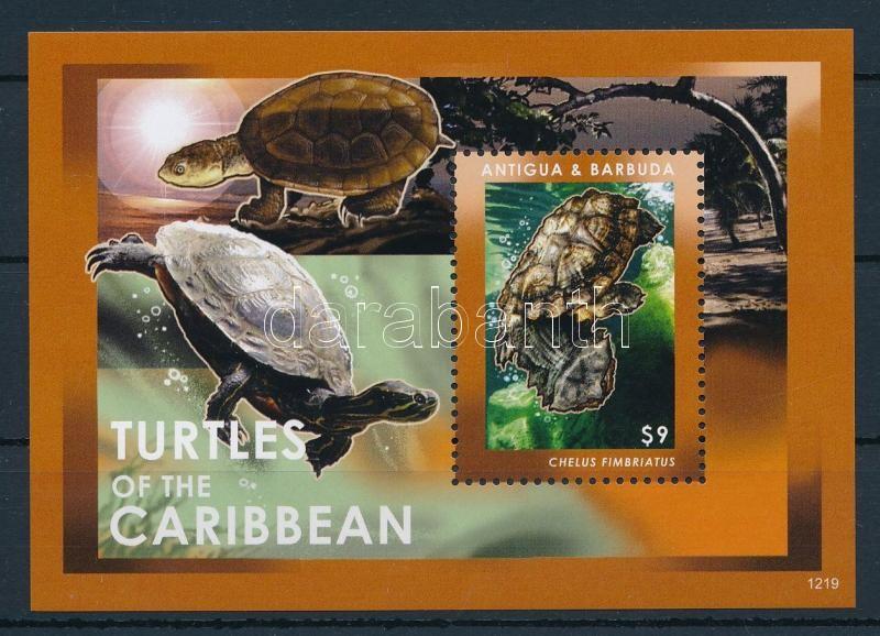 Turtles block, Teknősök blokk