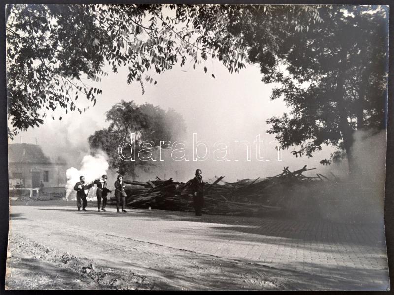 cca 1960 Medgyesi László (?-?) kecskeméti fotóművész hagyatékából 2 db vintage fotó, 30x40 cm