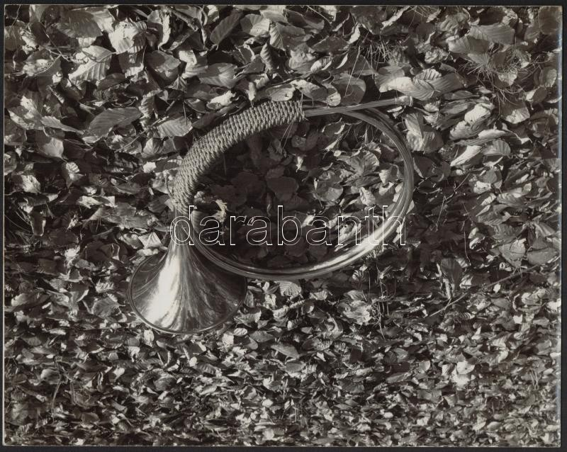 cca 1970 A vadászat végén, jelzés nélküli, vintage fotó, 23,5x30 cm