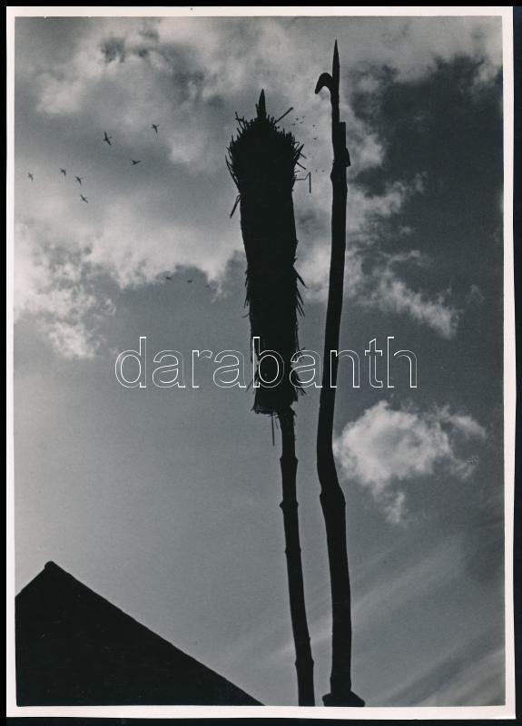cca 1939 Dr. Sevcsik Jenő (1899-1996) hagyatékából jelzés nélküli vintage fotóművészeti alkotás, 28,6x20,5 cm