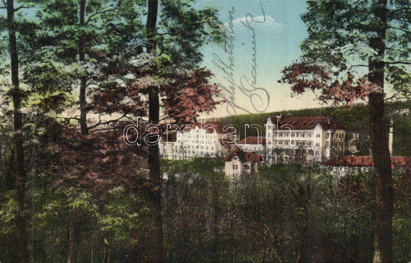 Budakeszi Erzsébet szanatórium