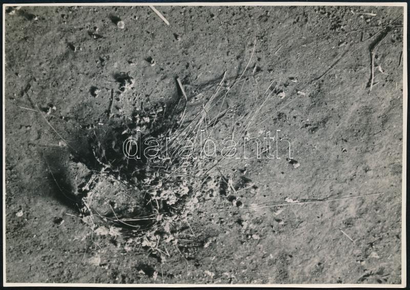 cca 1932 Kinszki Imre (1901-1945) budapesti fotóművész, Verőcén készített, pecséttel jelzett vintage alkotása, a szerző által feliratozva, (Leesett fecskefészek), 11,5x16 cm