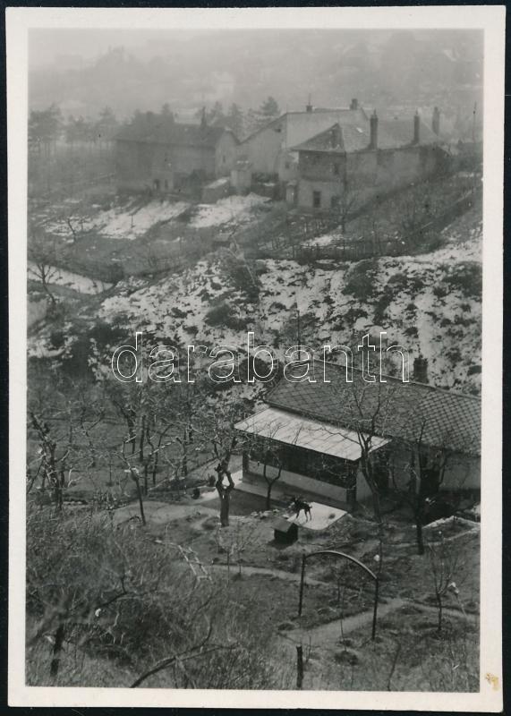 1935 március 15. Kinszki Imre (1901-1945) budapesti fotóművész jelzés nélküli vintage fotója, az általa összeállított gyűjtőalbumból kiemelve, a szerző által datálva, (Vége a télnek), 8,4x6 cm