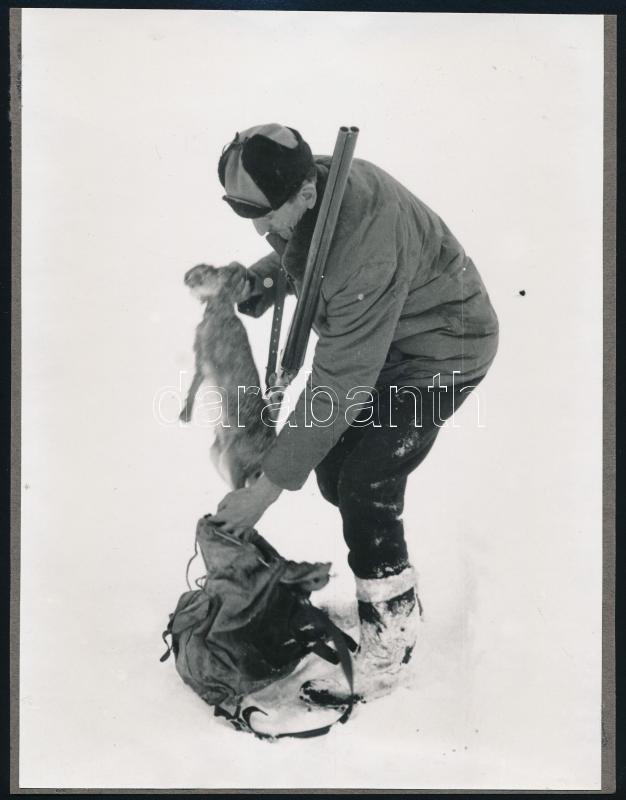 cca 1975 Vadászzsákmány, jelzés nélküli vintage fotó, 24x18 cm