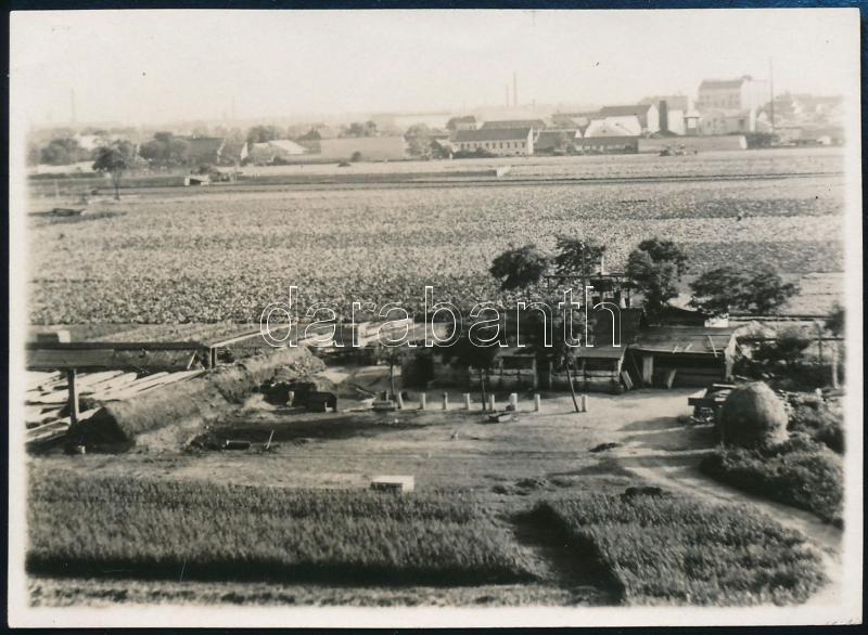 1929 Kinszki Imre (1901-1945) budapesti fotóművész hagyatékából, a szerző által feliratozott vintage fotó (Zugló, bolgár kertészet), 6x8,3 cm