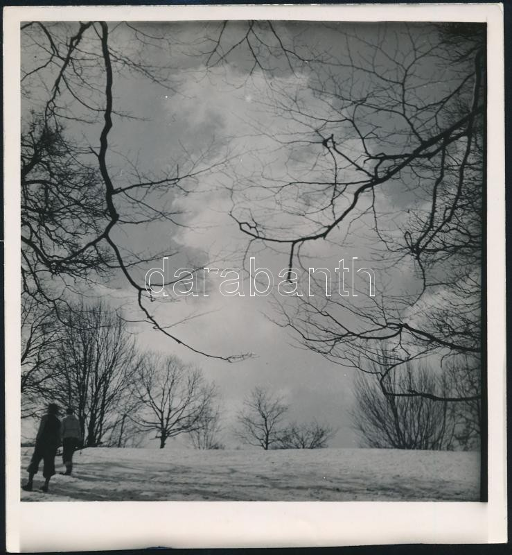 cca 1933 Kinszki Imre (1901-1945) budapesti fotóművész hagyatékából, jelzés nélküli, vintage fotóművészeti alkotás (Téli táj), 19,5x18 cm