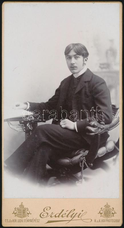 cca 1890 Budapest, Erdélyi Mór (1866-1934) császári és királyi udvari fényképész műtermében készült, keményhátú vintage fotó, 20,5x11 cm