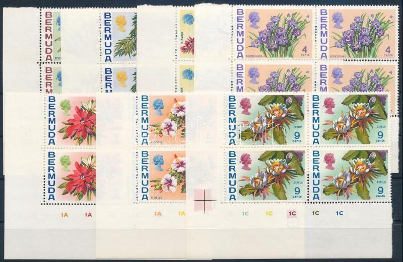 Flower set in corner blocks of 4, Virág sor ívsarki négyestömbökben