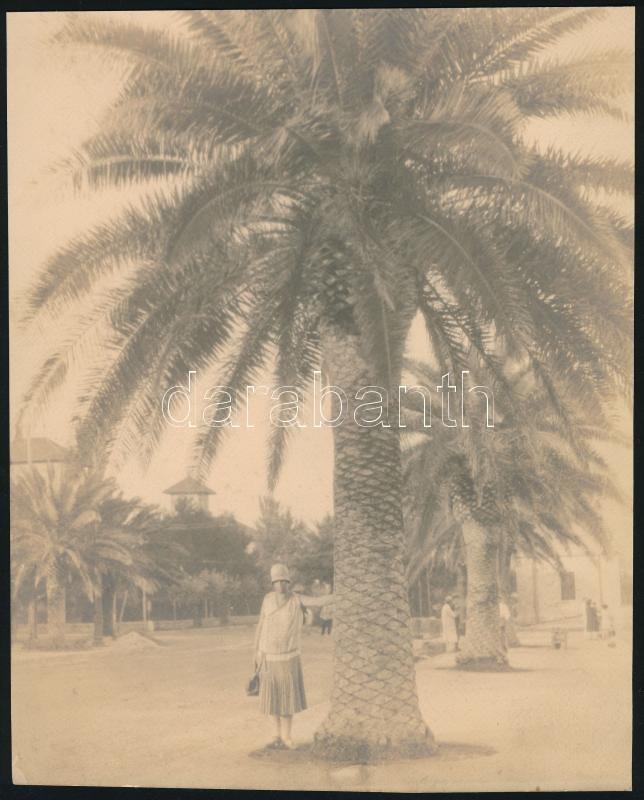 cca 1908 Tunisz, feliratozott vintage fotó, 21,5x17,7 cm