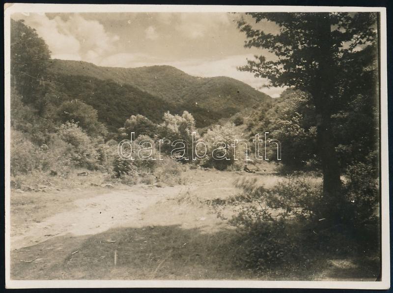 cca 1932 cca 1935 Kinszki Imre (1901-1945) budapesti fotóművész hagyatékából aláírt és feliratozott vintage fotó (Lepence), 6x8,4 cm
