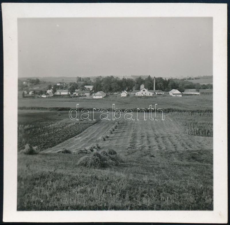 cca 1937 Kinszki Imre (1901-1945) budapesti fotóművész hagyatékából jelzés nélküli vintage fotó (betakarítás idején), 6,4x6,4 cm