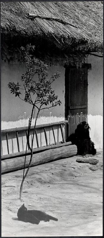 cca 1972 Galbavi Alfonz: Békesség, feliratozott vintage fotóművészeti alkotás, 40x17,4 cm