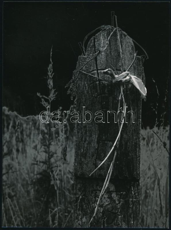 cca 1978 Kalocsai Rudolf (?-?) budapesti fotóriporter és fotóművész hagyatékából jelzés nélküli vintage fotó, a magyar fotográfia avantgarde korszakából, 24x18 cm