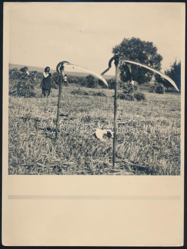 cca 1930 Aratás, a helyszín feliratozva, de nehezen olvasható, vintage fotó, 24x18 cm
