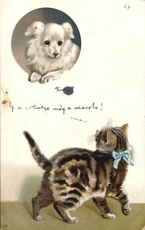 Cat and dog litho, Kutya és macska litho